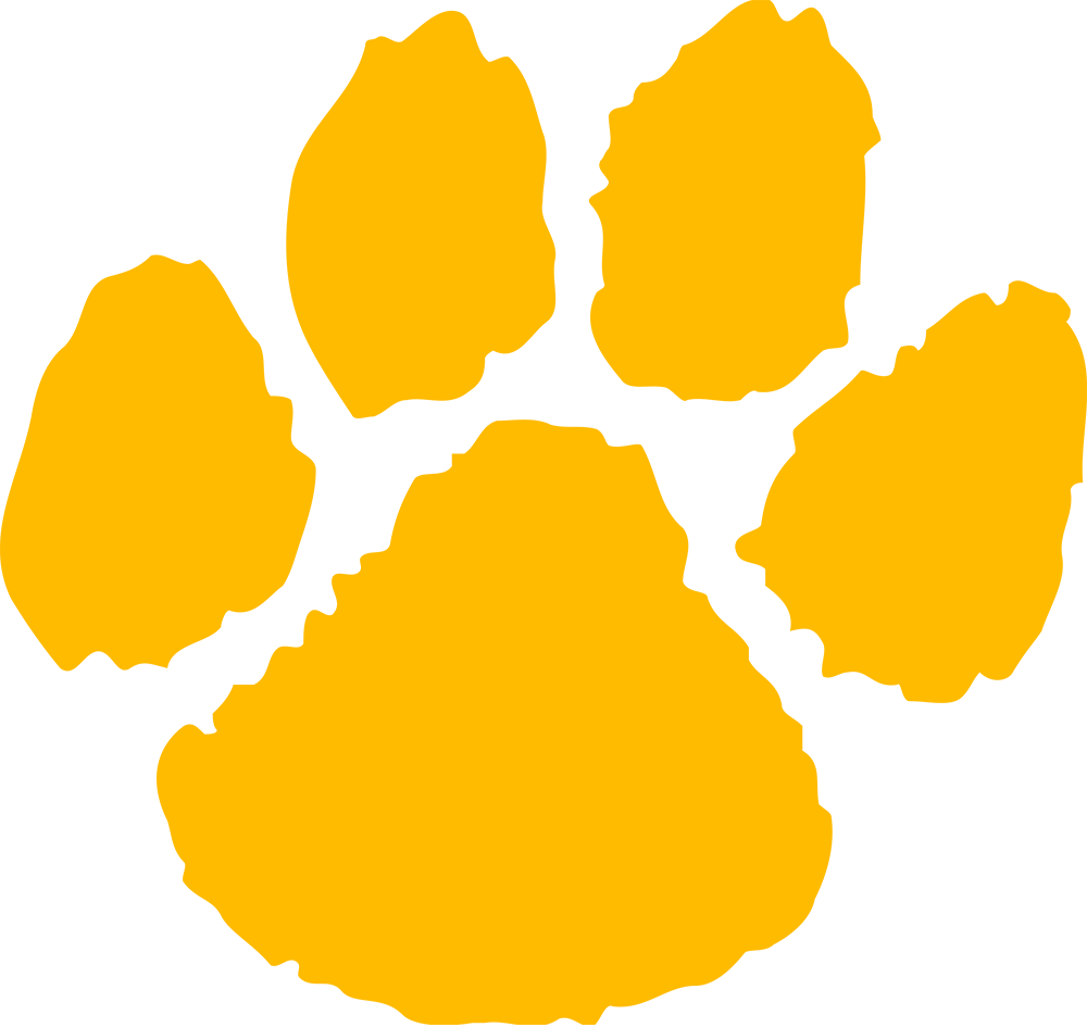 Transparent paw yellow. Wildcat logo google search