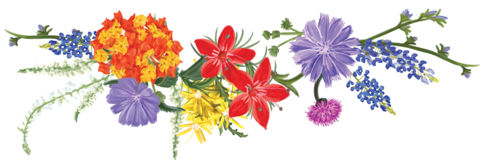 Photos clip art free. Wildflower clipart svg black and white library