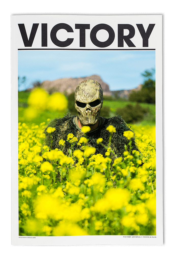 Wildflower vector canola plant. About victory journal issue