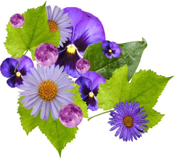 Wildflower vector posy. A png clipart