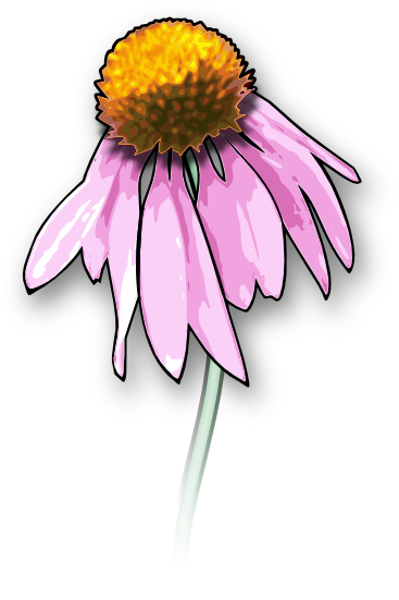 Wildflower vector posy. Free flower clipart and