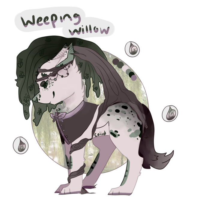 Willow drawing weeping. Plant sprite open by