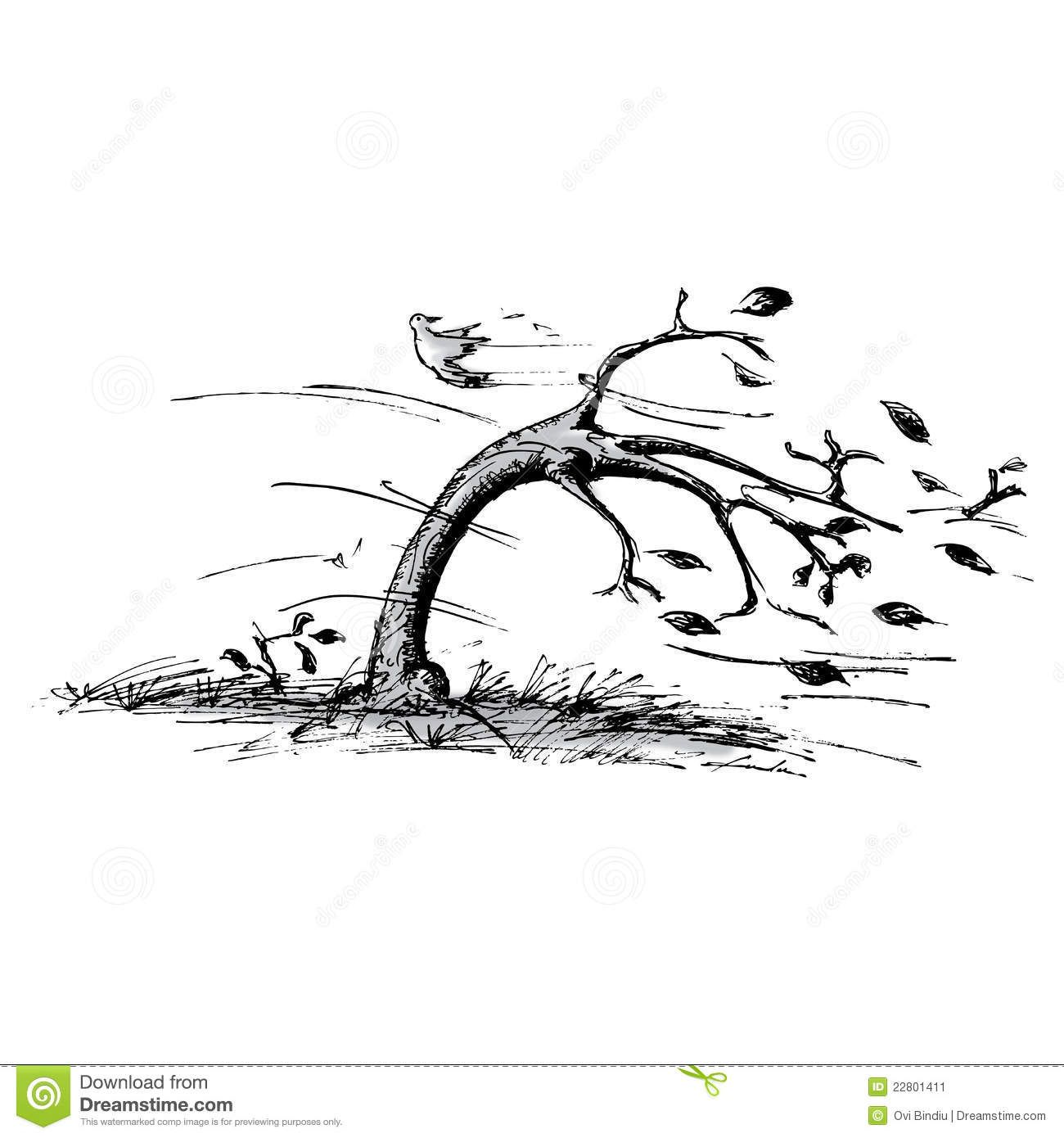 Wind clipart wind damage. Image result for blowing
