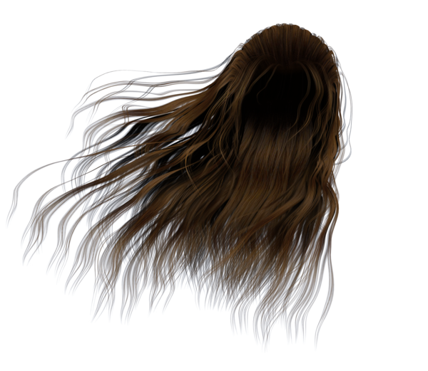 Windy hair png. Stock images long brown
