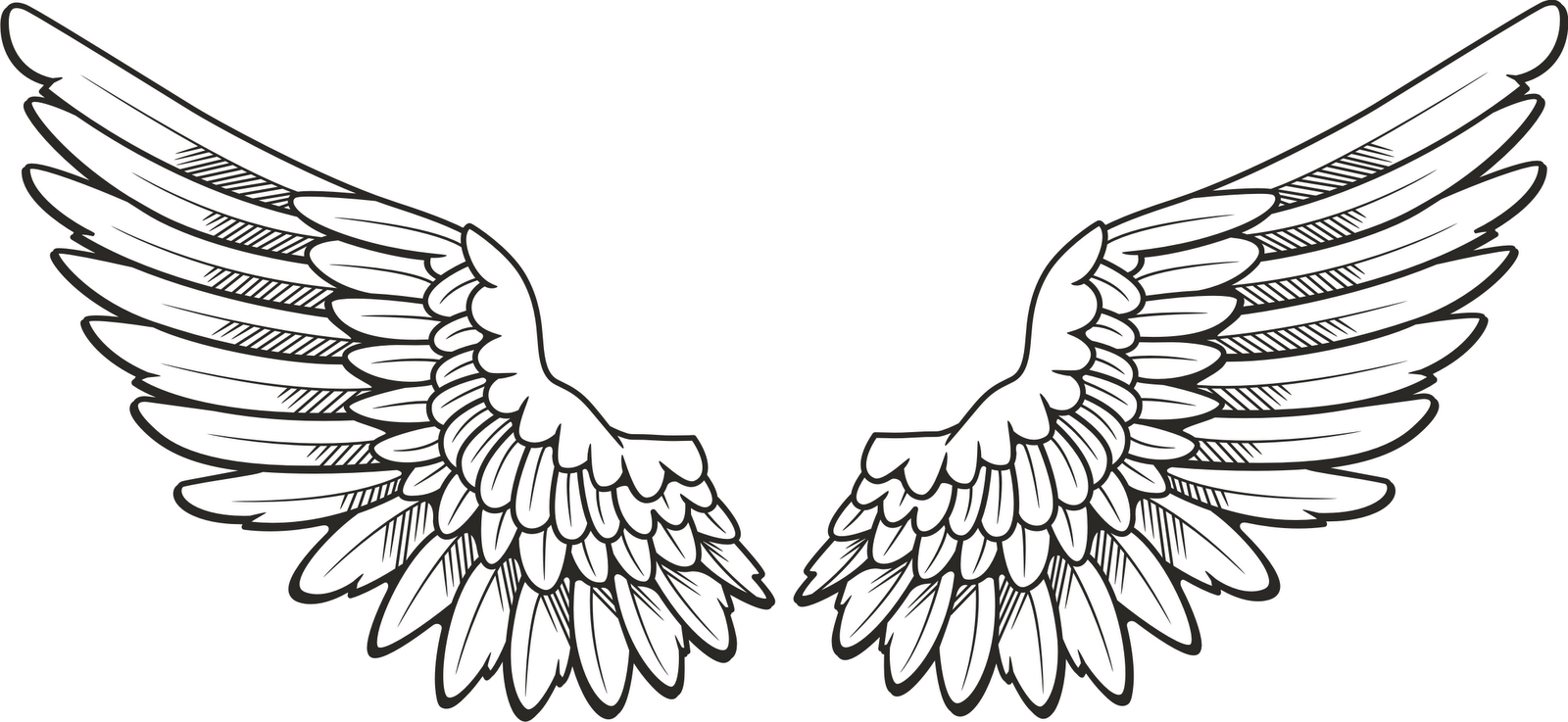 Wing clipart. R minecraft wings feathers