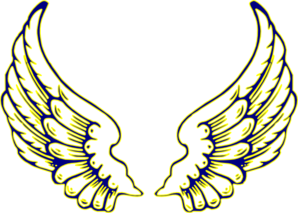 Wing clipart colored wing. Blue and yellow wings
