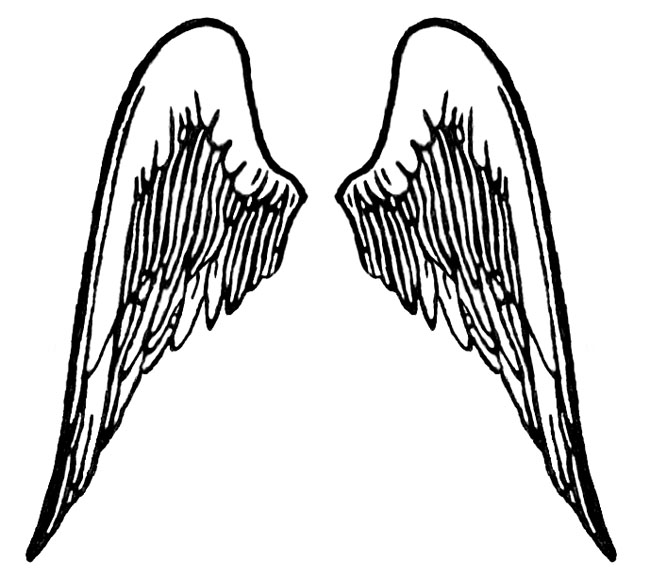 Wing clipart colored wing. Simple angel wings drawing