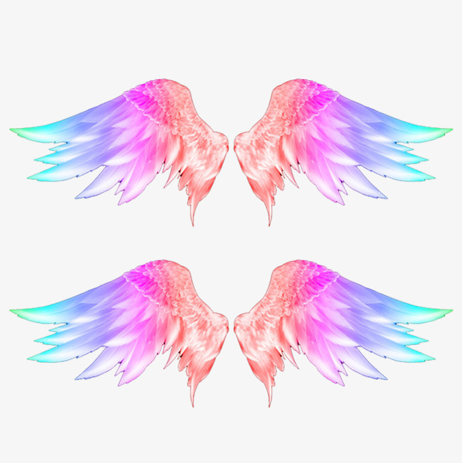 Wing clipart colored wing. Color wings photos png