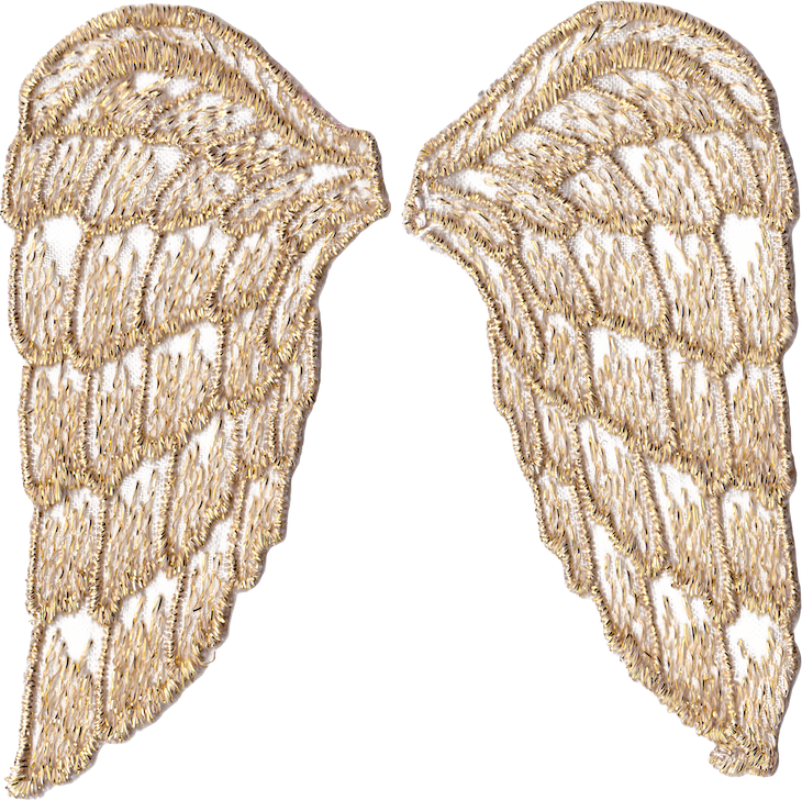 golden angel wings png