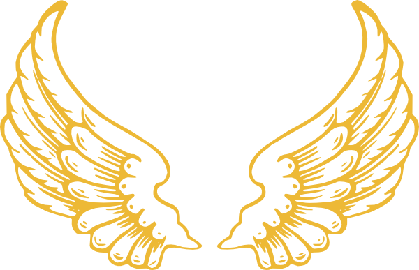 Eve drawing wing. Gold wings clip art