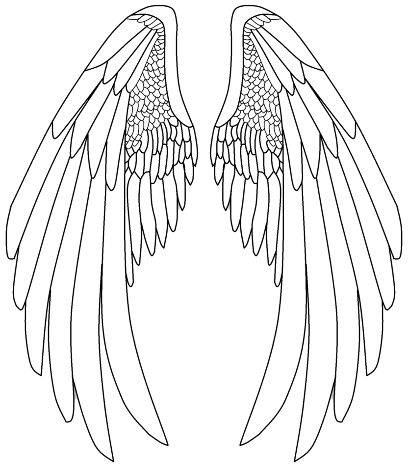 Eve drawing wing. Realistic angel wings at