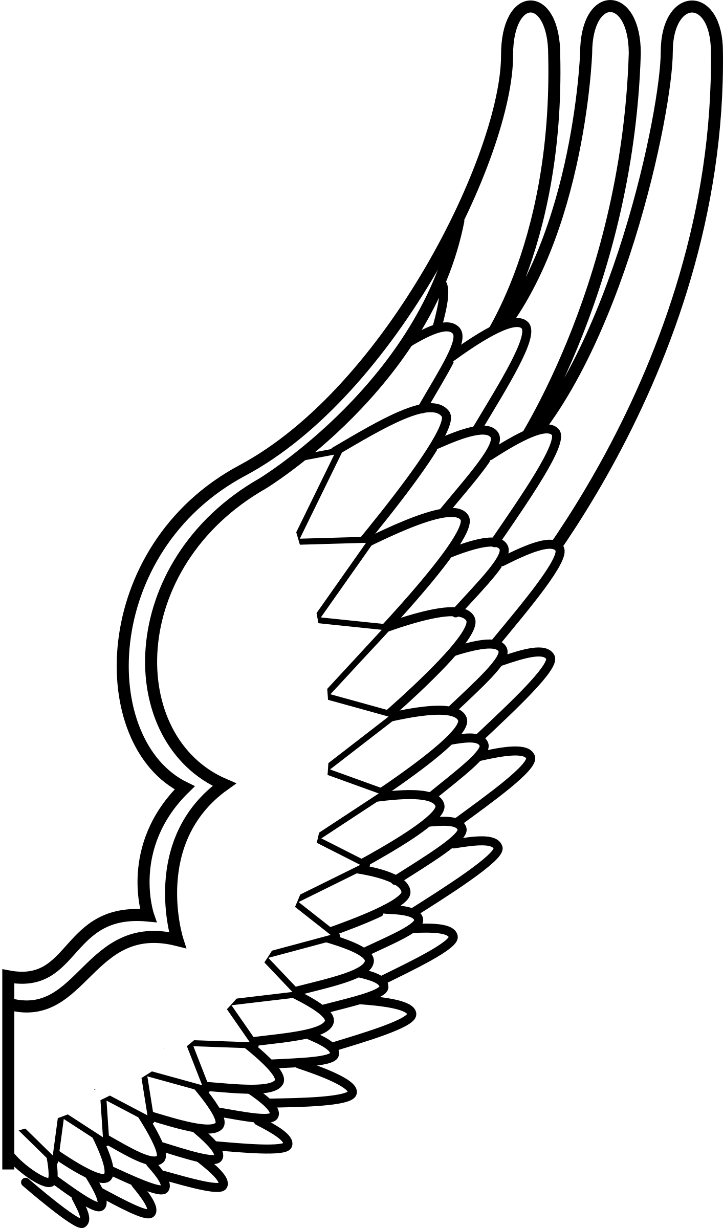 Wing drawing png. Archaic of a bird