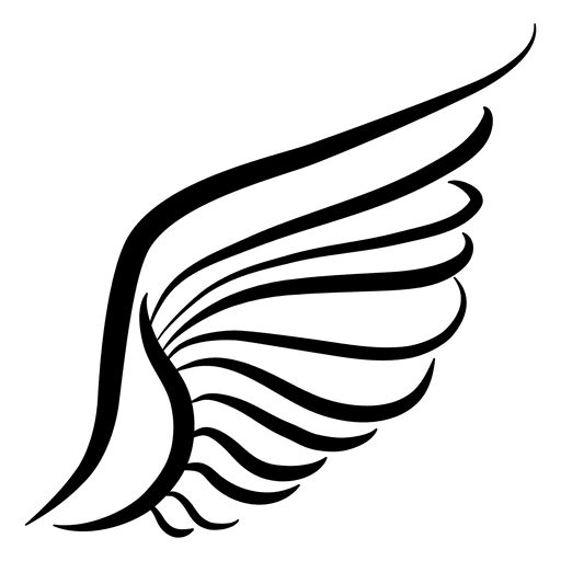 Wing drawing png. Hand drawn silhouette transparent