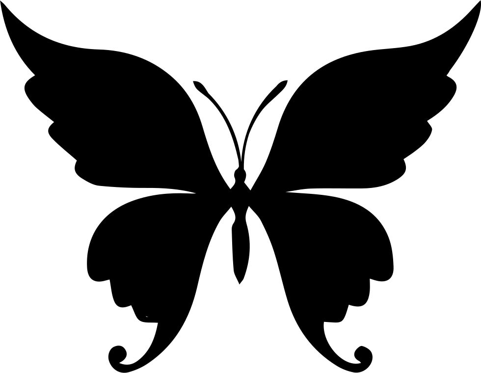 Wing svg butterfly. Beautiful shape png icon