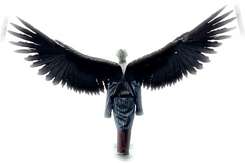 Wings bts png. Taehyung freetoedit sticker by