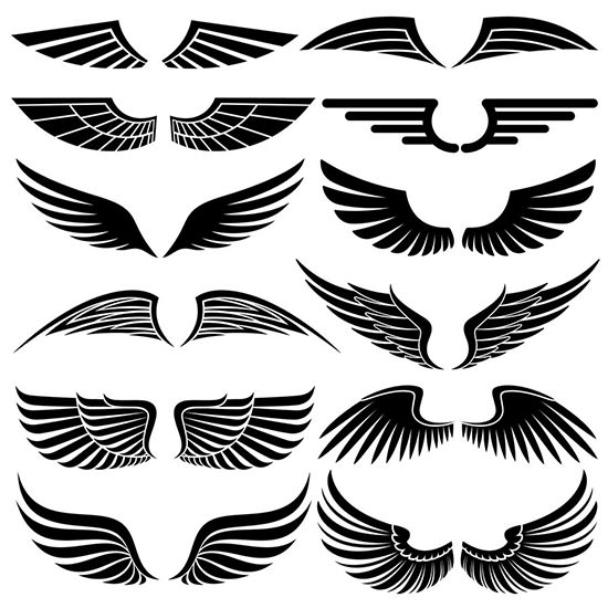 Wings clipart military. Photoshop premium wing