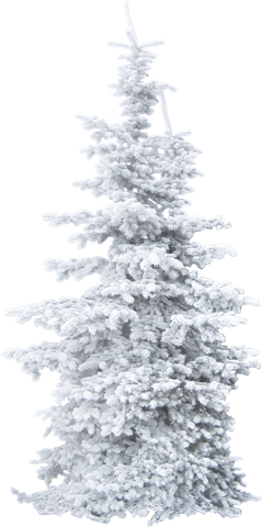 Snow trees png. Winter clip art wtpng