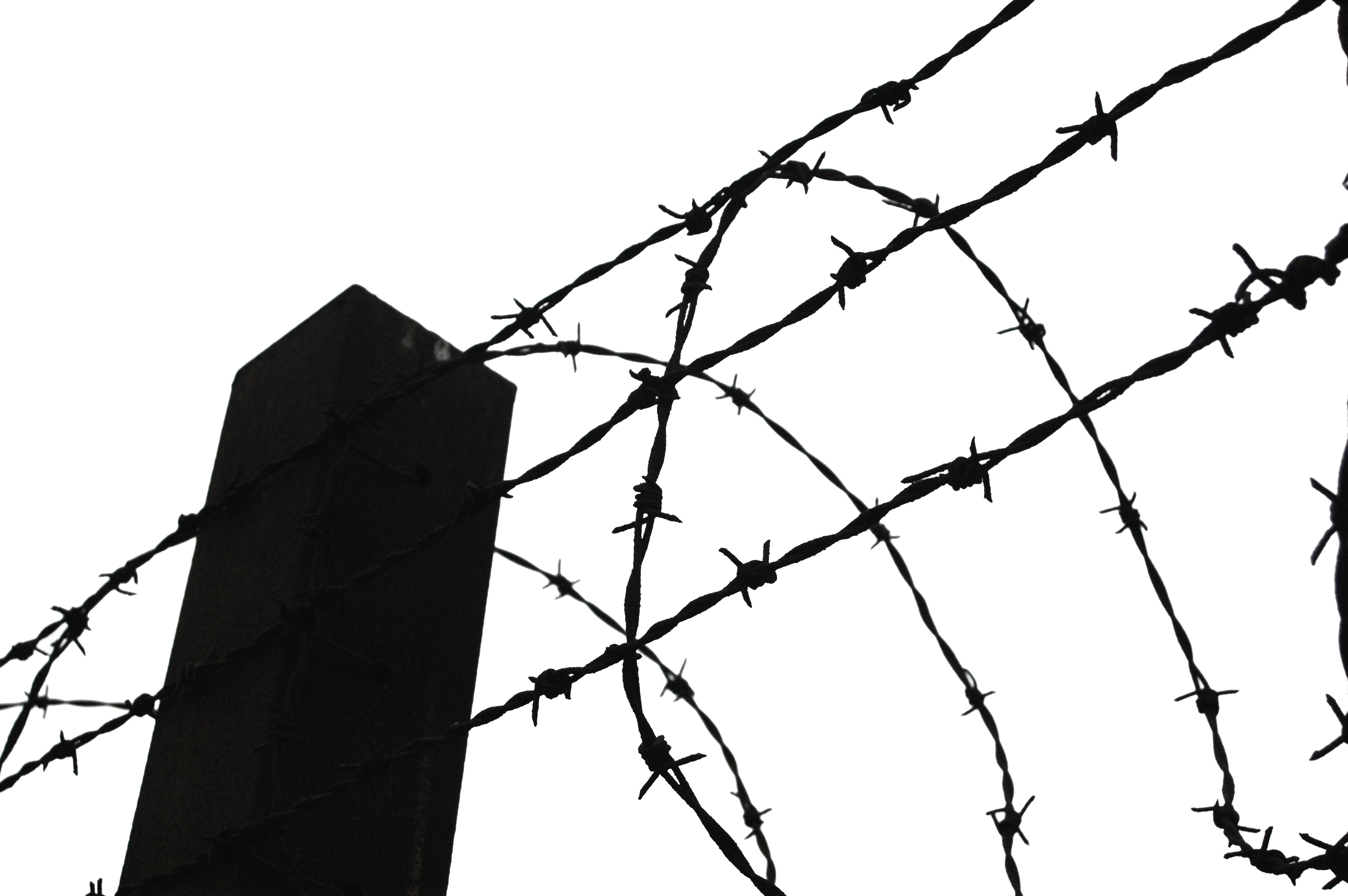 Wire fence png. Barbwire transparent images all