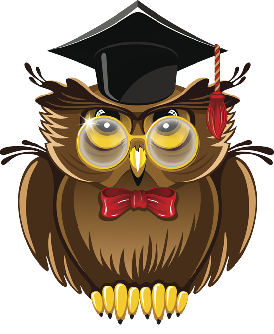 Wise owl png. Transparent images pluspng clipart
