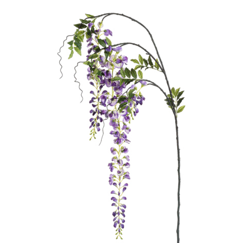 Wisteria flower png. Inch japanese spray