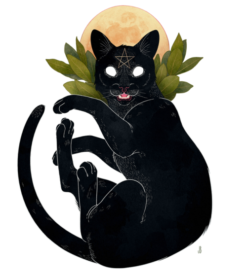 Witch png tumblr. Witchcraft cat f a