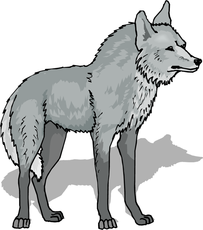Wolfs drawing background. Free wolf howling clipart