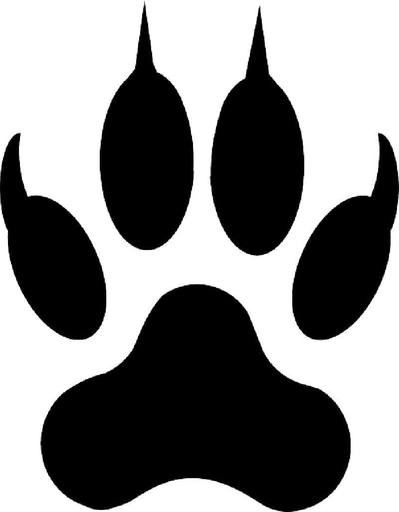 Wolf fangs png. Clip art google search