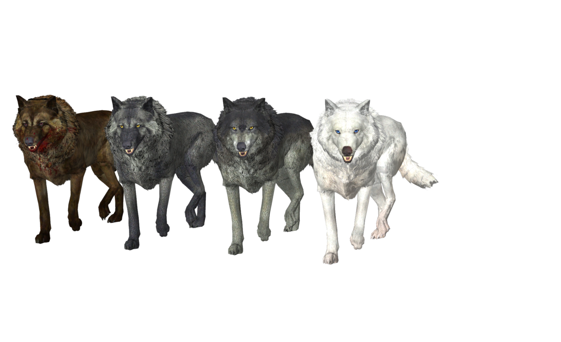 Wolf pack png. Tw wolves mmd xps