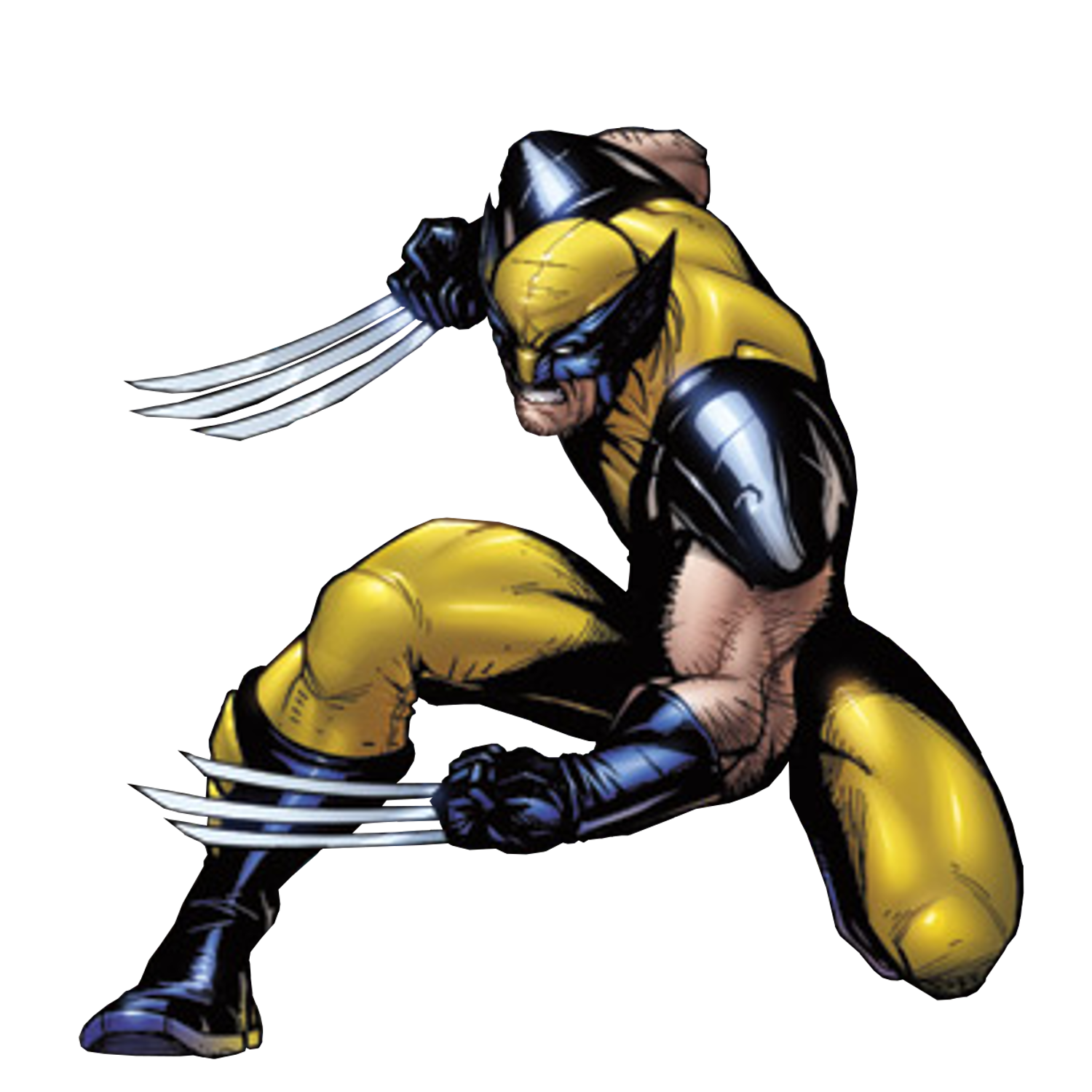 Drawing wolverine original
