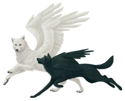 Wolves transparent winged. Wolf pair by inazumaokami