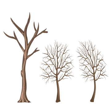 Png winter. Tree branch images vectors