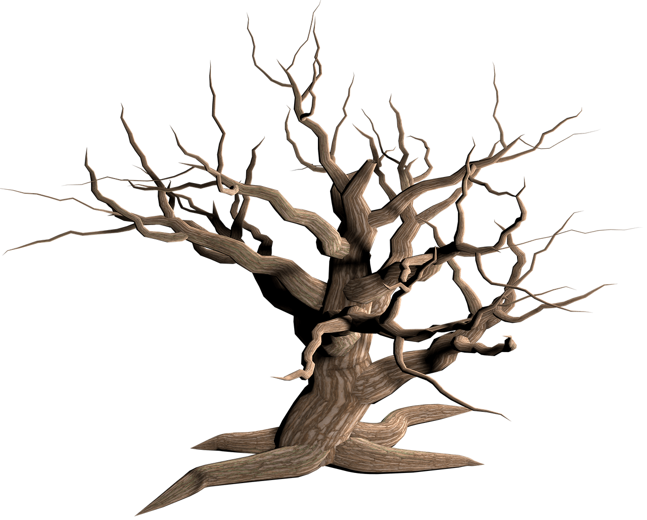 Wood branch png. Tree dead branches transparent