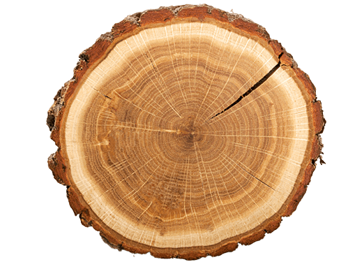 Wood log png. Home chichester logs and