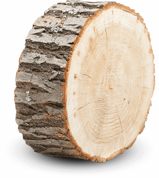 Wood png. Index of wp content