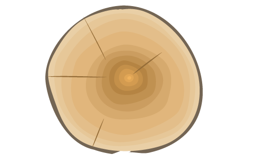 Wood slice png. Report to customers