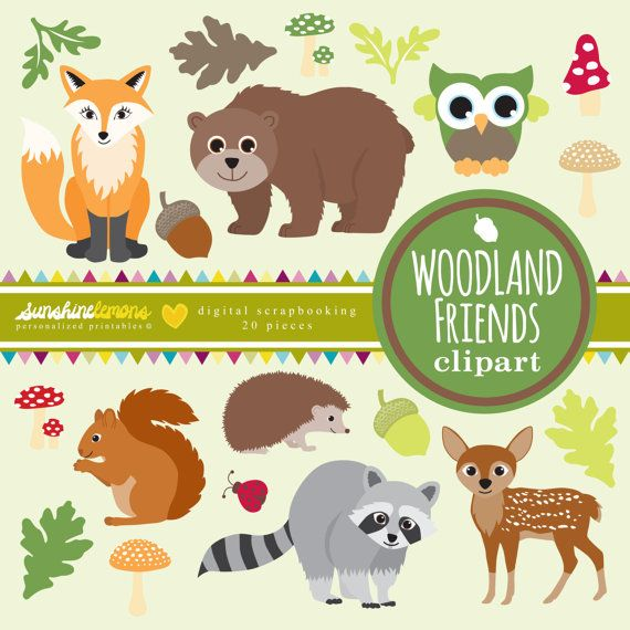 Woodland clipart tiny. Best creatures images