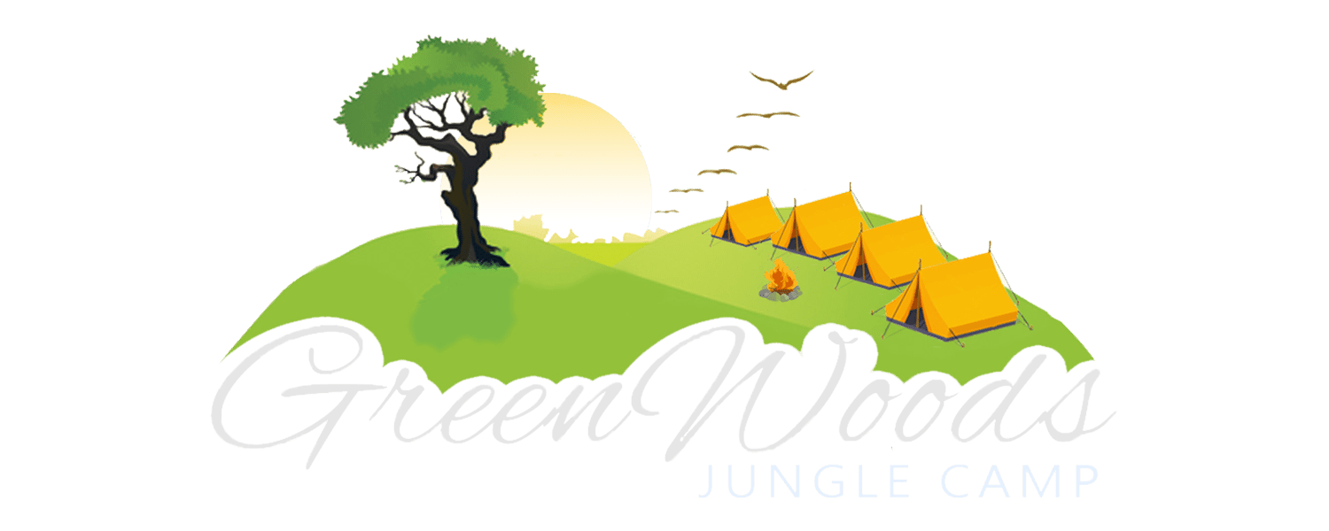 Nature camp green jungle. Woods clipart jangle graphic transparent