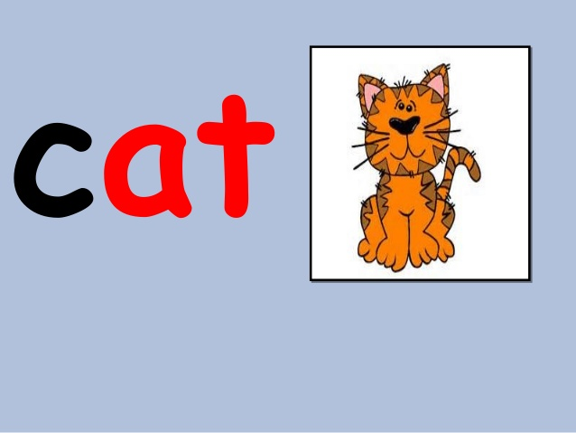 Words clipart cat. At word family