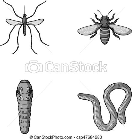Wasp bee hornet insects. Worm clipart centipede graphic library
