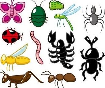 Worms clipart invertebrate. Lesson plan of classification
