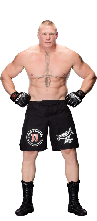 Wrestler drawing mma fighter. Brock lesnar pro wrestling