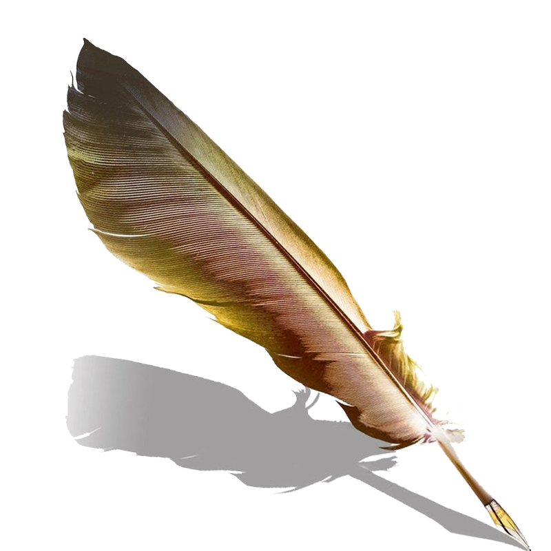 Writing feather png. Quill fountain pen transprent