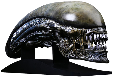 Xenomorph transparent side. Alien covenant life size