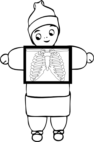 Xray drawing kindergarten. Svg freeuse library