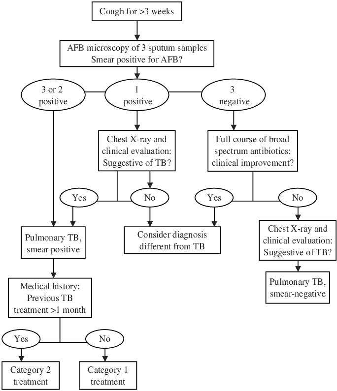 Xray drawing paediatric. Algorithm for diagnosis of