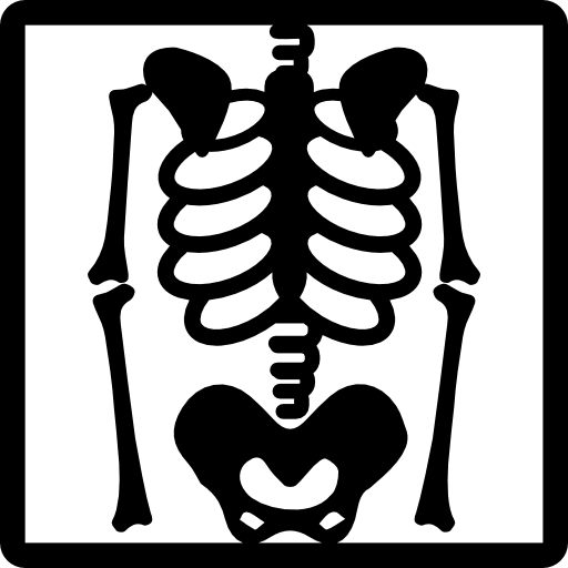 Xray drawing skeleton. View on x ray