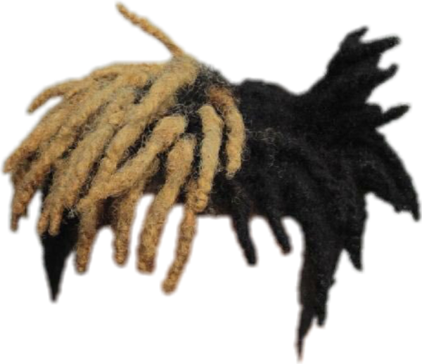 Dreads vector transparent. Hair xxxtentacion know your