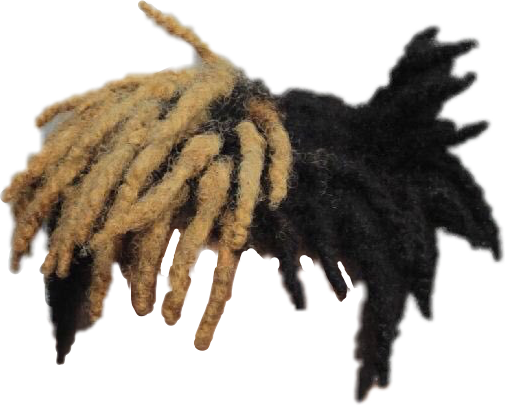 Xxxtentacion hair png. Hiphop sticker by sports