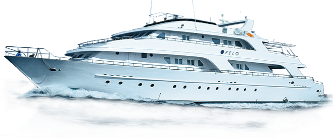 Yacht png boat. Luxury transparent images pluspng