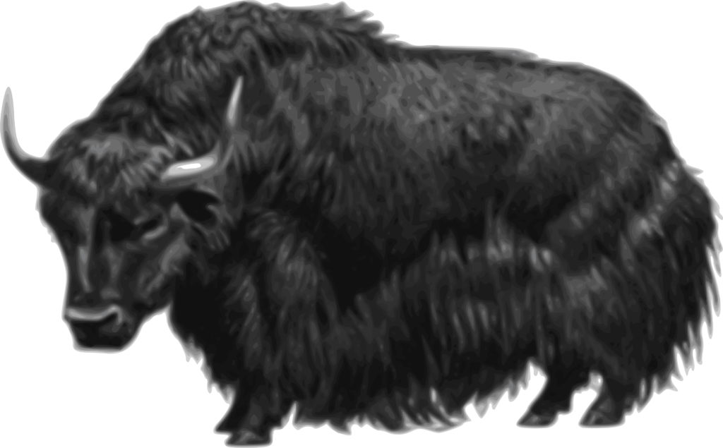 Yak clipart black and white. Free of a
